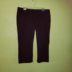Express capri pants 12 black